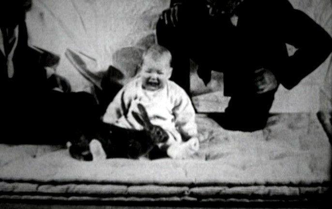 En korkunç deney: Küçük Albert Yemek Tarifleri  korkun deney albert