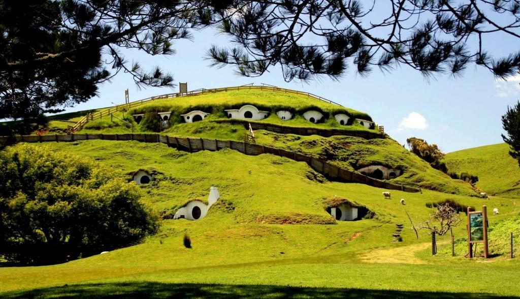Yeni Zelanda Sosyal Medya  zelanda