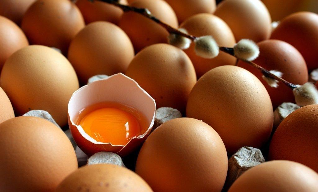 Yumurta Bozulmadan Nasıl Saklanır ? İlginç Bilgiler  Yumurta saklan bozulmadan