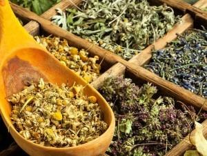 Şifalı bitkiler nelere iyi gelir ? Sağlık  nelere gelir bitkiler