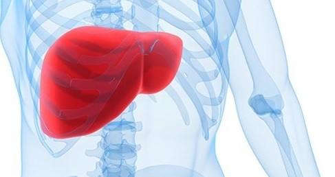 Karaciğer yağlanmasına iyi gelen besinler Sağlık  lanmas karaci gelen besinler