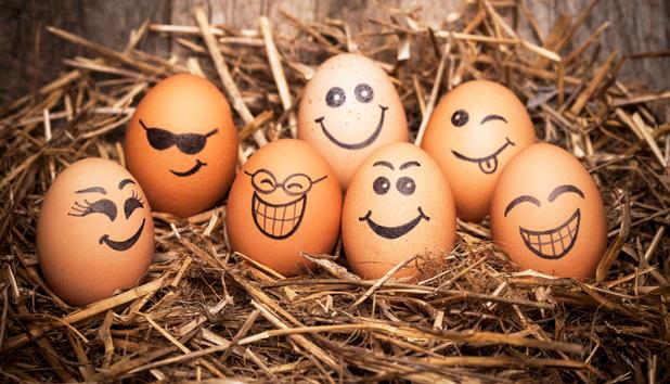 Yumurtanın Besin Değeri Sağlık  yumurtta kaç kalori Yumurtanın Besin Değeri Yumurta